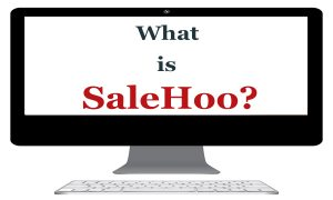 What-is-Salehoo - Can you make money with Salehoo