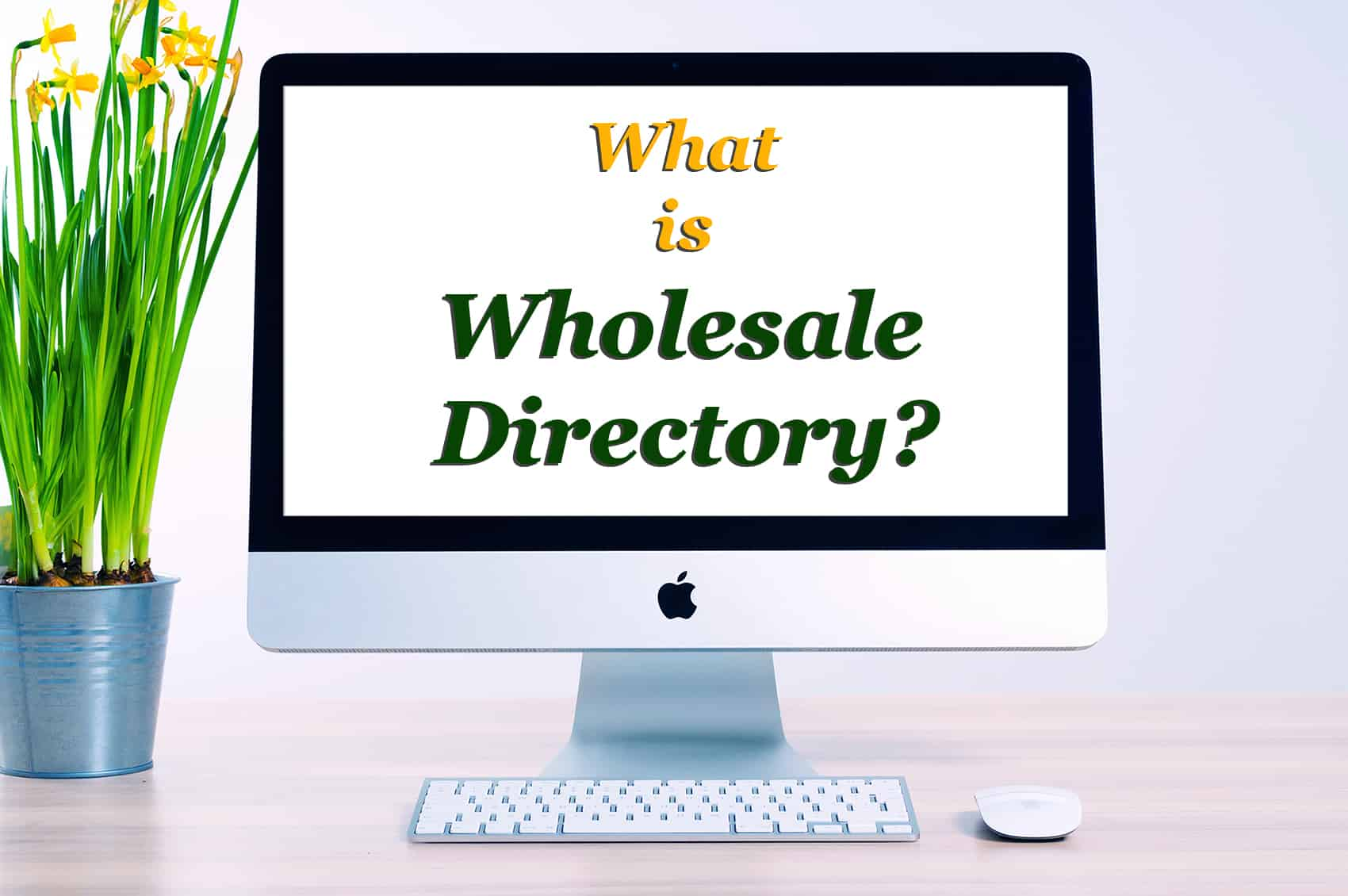 What is Wholesale Directory