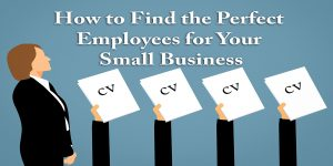 How to Find the Perfect Employees for Your Small Business